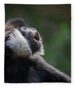 Male White-cheeked Gibbon Fleece Blanket