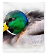 Mallard Drake Fleece Blanket