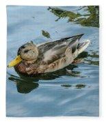 Solitaire Mallard Duck Fleece Blanket