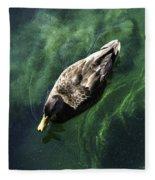 Mallard Duck On Green Pool Fleece Blanket