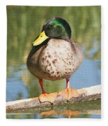 Mallard Duck On Log Fleece Blanket