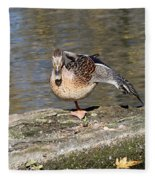 Mallard Duck Stretch  Fleece Blanket