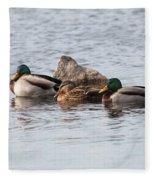 Mallard Ducks Sleeping Fleece Blanket