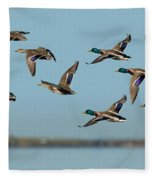 Mallard Flock Flying Fleece Blanket