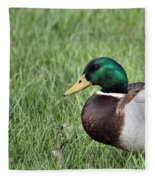 Mallard In The Grass Fleece Blanket