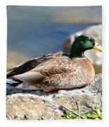 Mallard On Rock Fleece Blanket