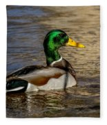 Mallard Square Format Fleece Blanket