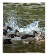 Mallard Water Party 2 Fleece Blanket