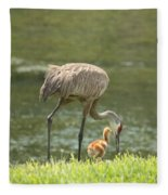 Mama And Chick Fleece Blanket
