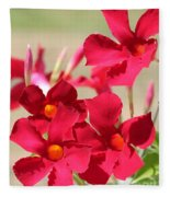 Mandevilla Named Sun Parasol Crimson Fleece Blanket
