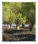 mangroves Madagascar 3 Fleece Blanket