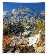 Many Glacier Colors Fleece Blanket