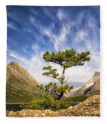 Many Glacier Tree Fleece Blanket