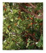 Many Orange On Tree Fleece Blanket