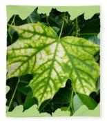 Maple Leaf In The Laurel Fleece Blanket