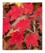 Maple Leaf Palette Fleece Blanket