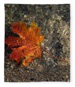 Maple Leaf - Playful Sunlight Patterns Fleece Blanket