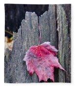 Maple Leaf - Uw Arboretum - Madison Fleece Blanket