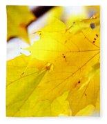 Maple Leaves At Autumn Glory 1 Fleece Blanket