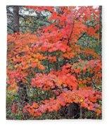 Maple Rush In The Fall Fleece Blanket