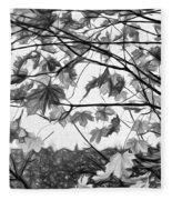 Maple Sunset - Paint Bw Fleece Blanket