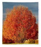 Maple Tree Fleece Blanket