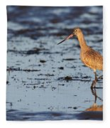 Marbled Godwit At Sunset Fleece Blanket