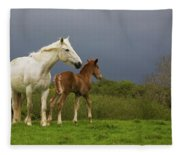 Mare And Foal, Co Derry, Ireland Fleece Blanket