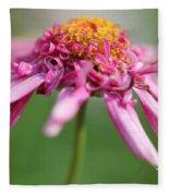 Marguerite Daisy Named Summer Song Rose Fleece Blanket