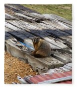 Marmot Resting On A Railroad Tie Fleece Blanket