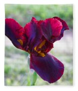 Maroon Iris Fleece Blanket