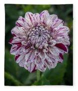 Maroon Speckled Dahlia Fleece Blanket