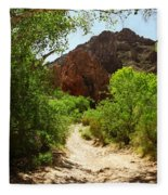 Martinez Canyon Fleece Blanket