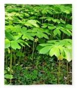 Mayapple Plants Fleece Blanket