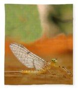 Mayfly Art Fleece Blanket