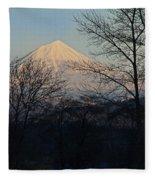 Mclaughlin Late Winter Day Fleece Blanket
