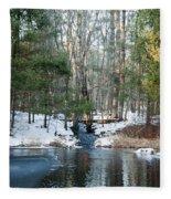 Meadow Brook Pond 1 Fleece Blanket