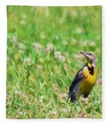 Meadowlark In The Wildflowers Fleece Blanket