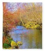 Meandering Stream  Fleece Blanket