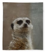 Meerkat 5 Fleece Blanket