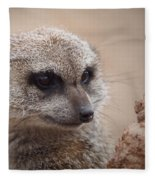 Meerkat 7 Fleece Blanket