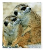 Meerkats Fleece Blanket