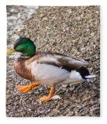 Meet Mr. Quack - A Mallard Duck Fleece Blanket
