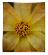 Mellow Yellow  2 Fleece Blanket
