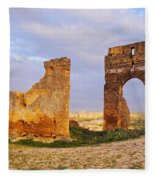 Merinid Tombs Ruins In Fes In Morocco Fleece Blanket