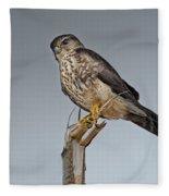 Merlin Falcon Fleece Blanket