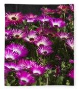Mesembryanthemums 3 Fleece Blanket