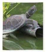 Metal Turtle Fleece Blanket