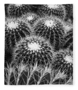 Mexican Golden Barrel Cacti Fleece Blanket