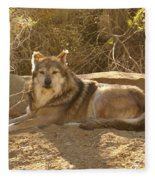 Mexican Wolf Close Up Fleece Blanket